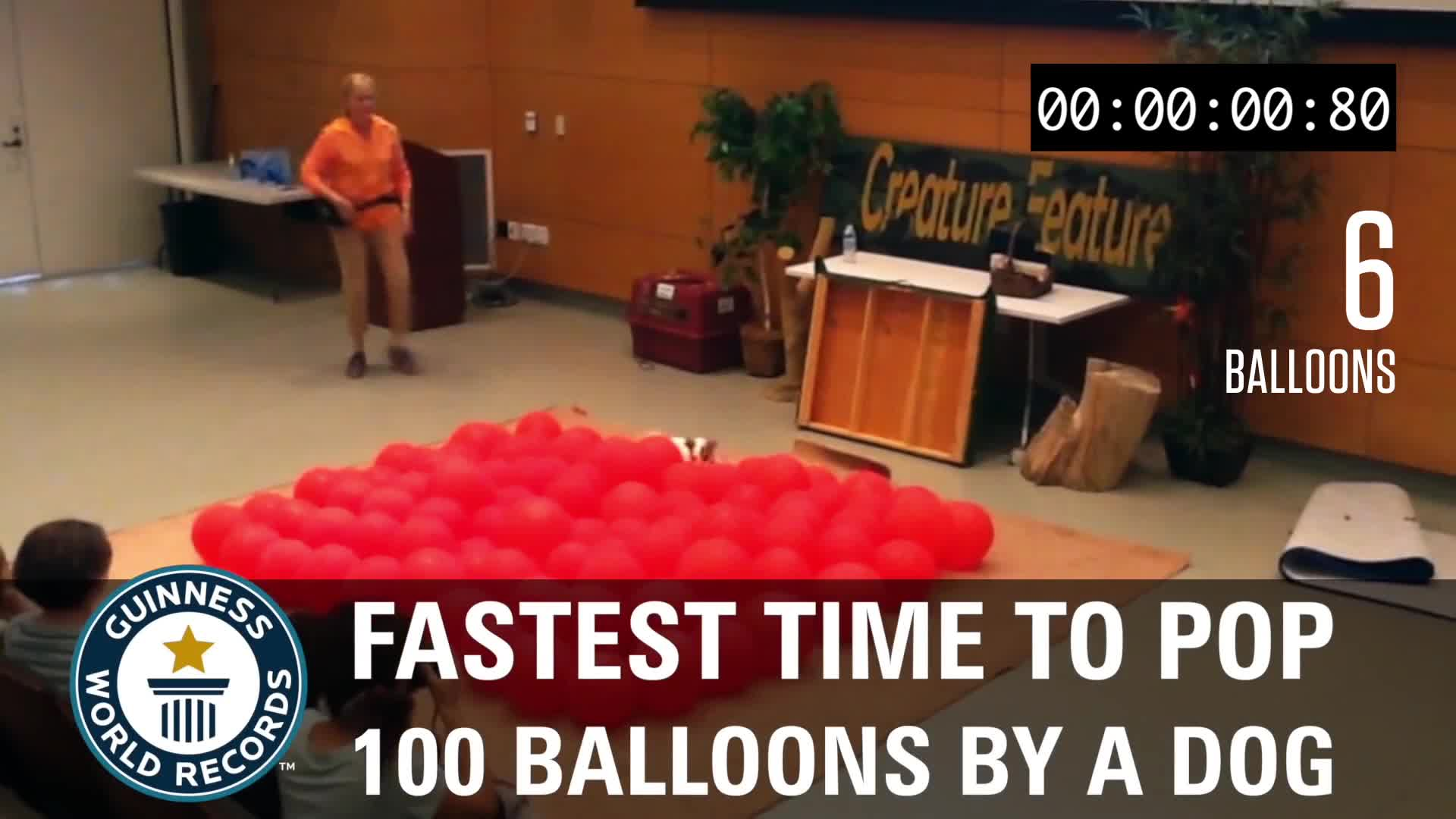 World Record Balloon Dog