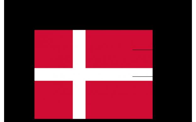 Flag Fractions