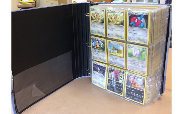 Pokemon Division Gr. 4-5
